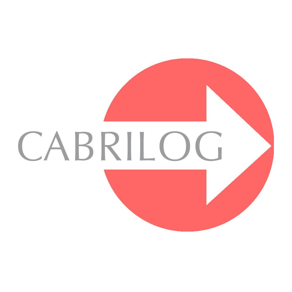 Cabrilog Website